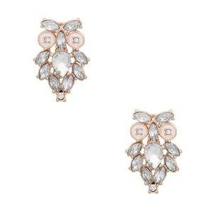 Kate Spade Wise Owl Crystal Earrings